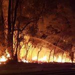 Incendi boschivi: prevenirli grazie alla videosorveglianza